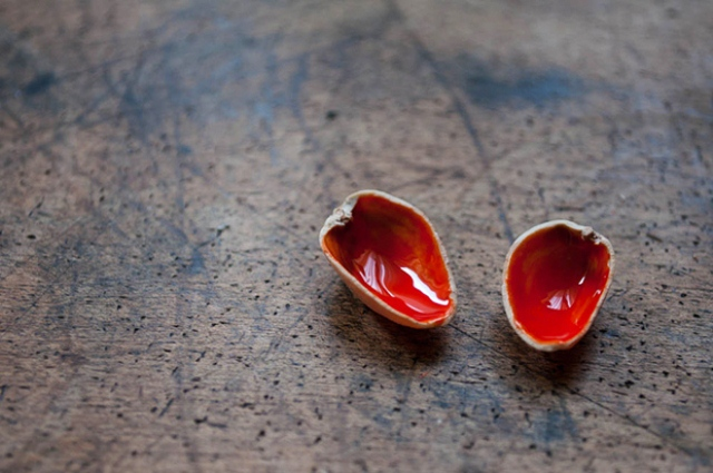 Diy Pistachio Shells Pin