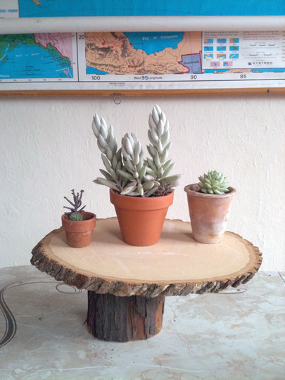 DIY Plant Stand Of Lumber Logs