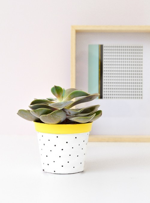 Romantic And Fun DIY Polka Dot Planter Pots