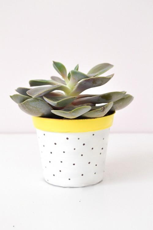 Diy Polka Dot Planter Pots