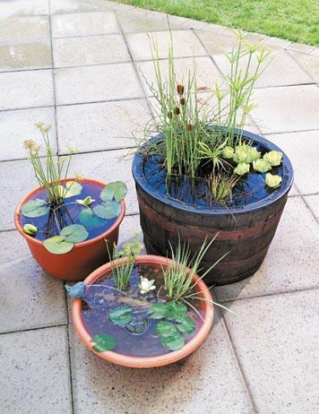 DIY Portable Outdoor Water Garden
