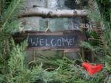diy-ruby-bird-on-a-window-holiday-wreath-4