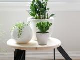 diy-scandi-inspired-low-profile-round-table-4