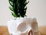 fun Halloween skull planter