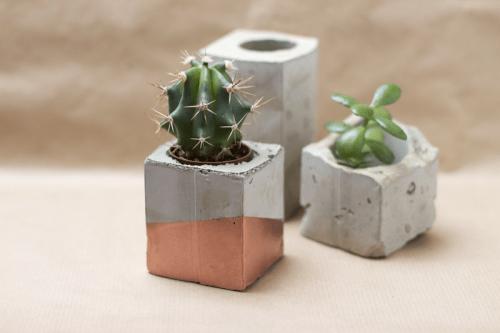 DIY Spray Painted Concrete Planters