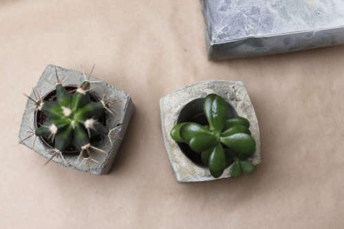 DIY Spray Painted Concrete Planters