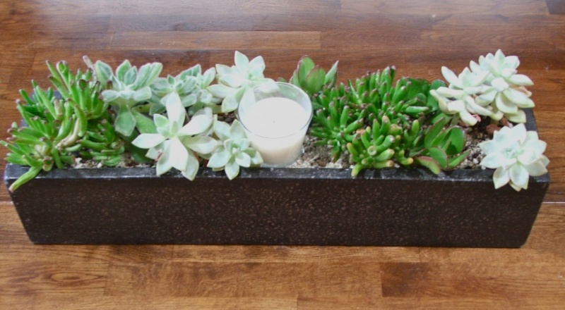 diy table top succulent planter shelterness