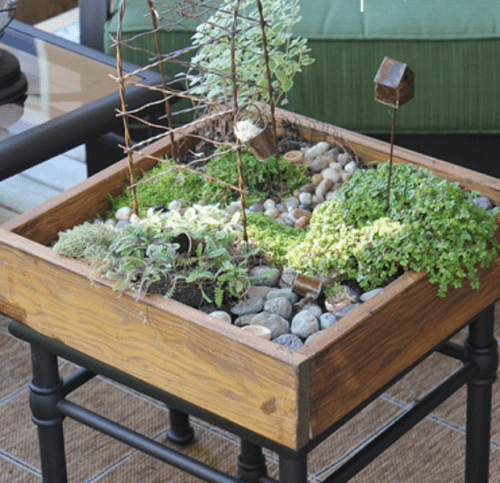 Diy tabletop miniature garden shelterness for Table zen garden