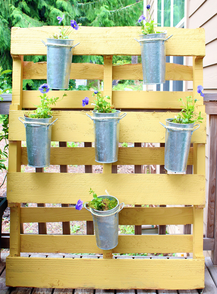Picture of diy vertical garden of a pallet for Vertical pallet garden