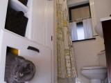 self venting cat litter box