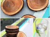 Diy Wood Branch Coasters