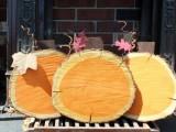 easy wood slice pumpkin