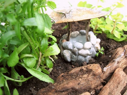 Diy Zen Like Mini Garden
