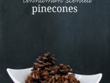 cinnamon scented pinecones