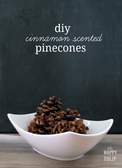 cinnamon scented pinecones (via thehappytulip)