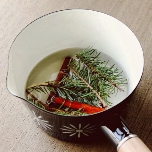 winter simmer recipe (via make-haus)