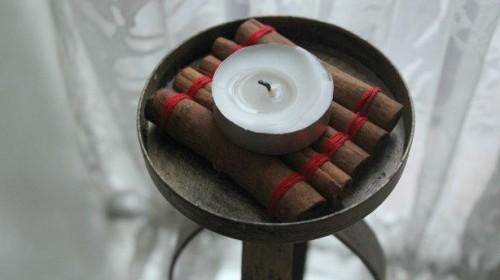 cinnamon stick coasters (via cutediys)