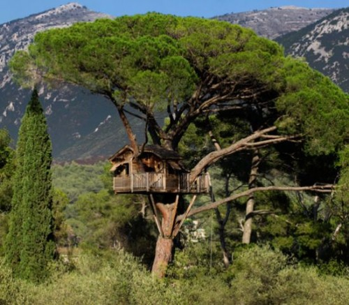 ...компании разработано более 250 домов на деревьях в одной только Европе.