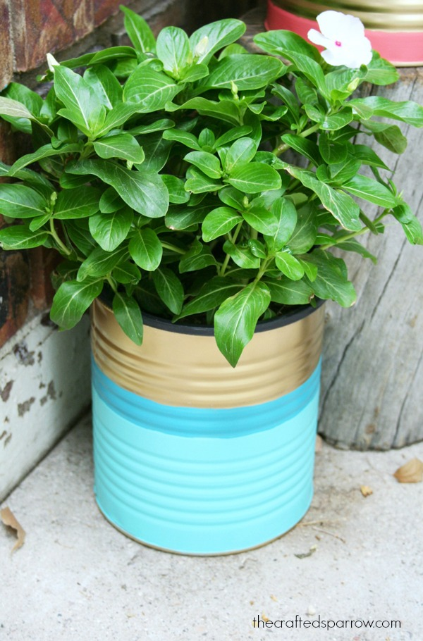 Picture Of easy and budget savvy diy painted tin can planters  6