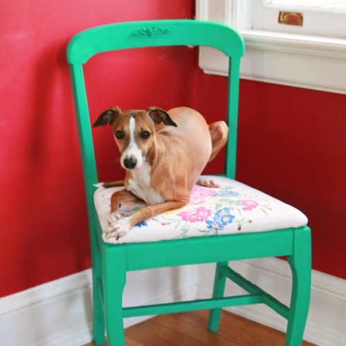 thrift store chair makeover (via mysocalledcraftylife)