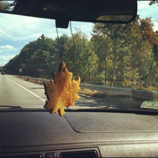 leaf car air freshener (via sunshinemakermeg)