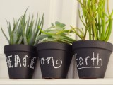 chalkboard pots with succulents