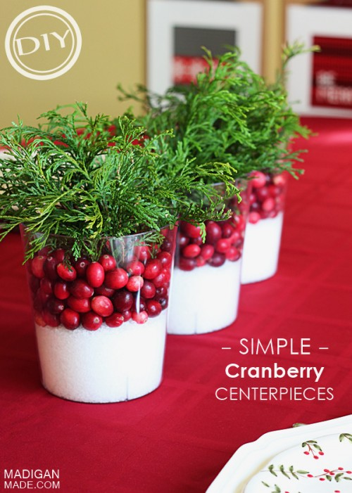 easy cranberry centerpiece (via easyidea)