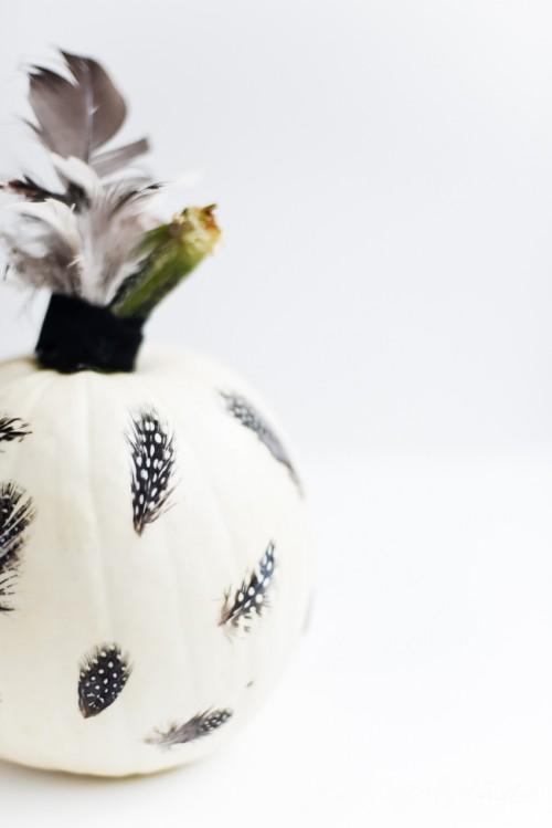 Eye Catching DIY Feathered Decoupage Pumpkin
