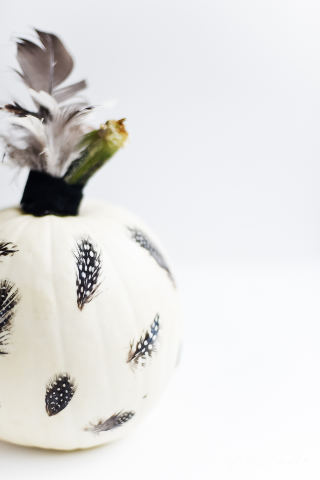 Picture Of eye catching diy feathered decoupage pumpkin  5