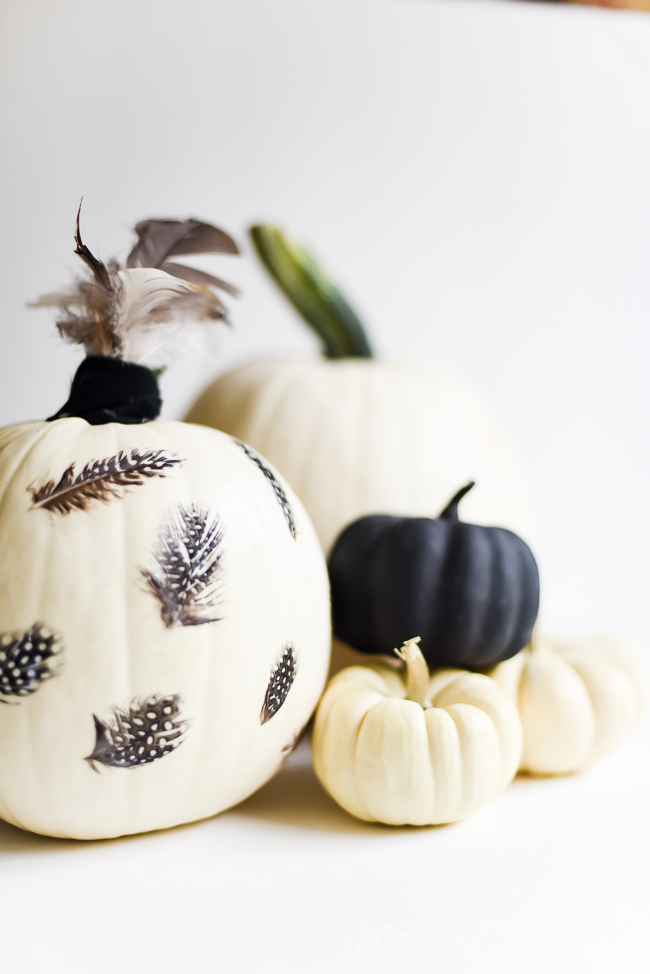 Picture Of eye catching diy feathered decoupage pumpkin  6