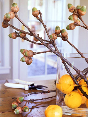 a glass vase with lemons and branches with acorns is a nice centerpiece or decoration with a strong natural feel