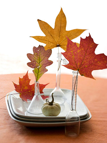 test tubes with colorful fall leaves compose a cool fall decoration for cheap and brings color to the space