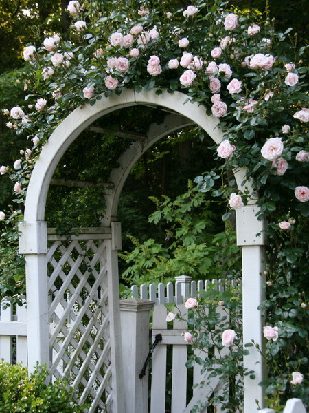 21 Cool Garden Archways Covered With Flowers
