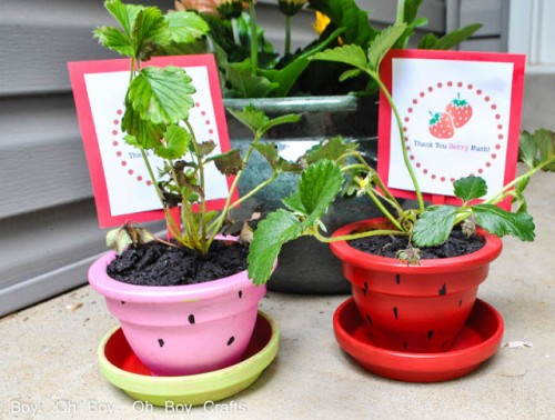 strawberry planter (via boyohboyohboycrafts)