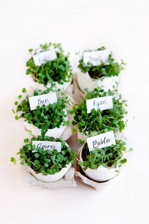 little Easter herb planters (via swoonedmagazine)