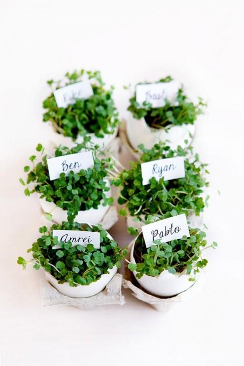little Easter herb planters (via swoonedmagazine)
