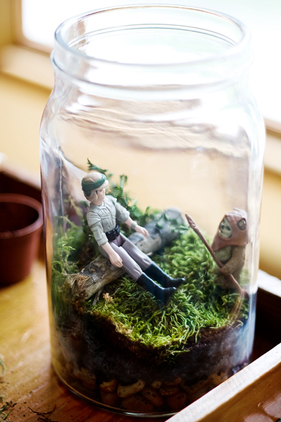 Star Wars terrarium (via craftfoxes)