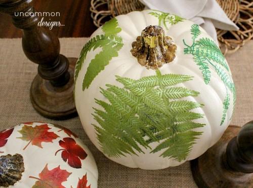 botanical pumpkins (via shelterness)