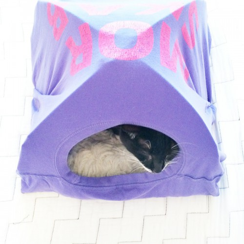 Funny And Original DIY T-Shirt Cat Tent
