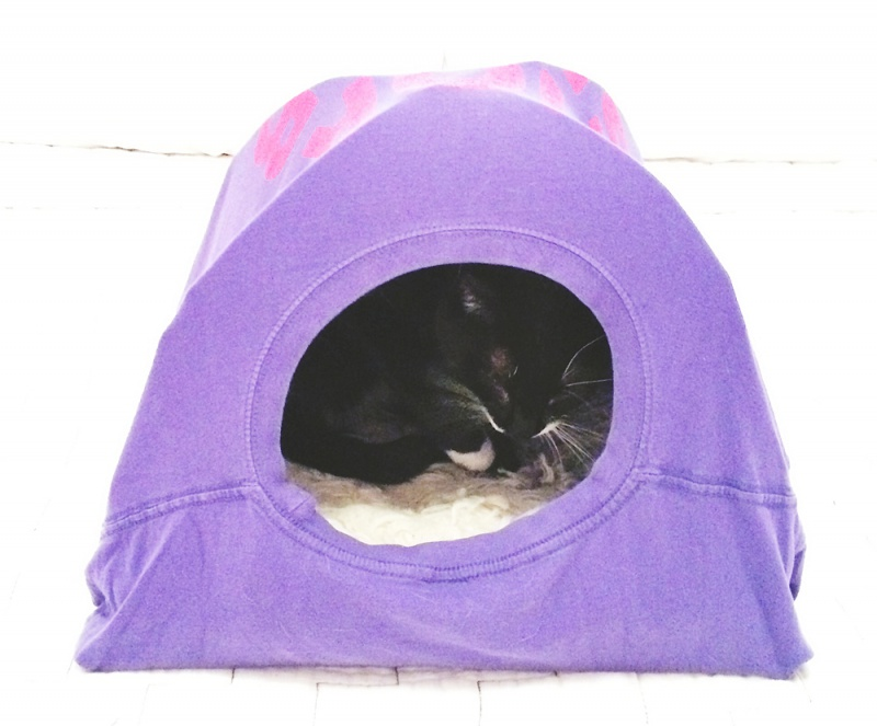 Picture Of funny and original t shirt cat tent  4
