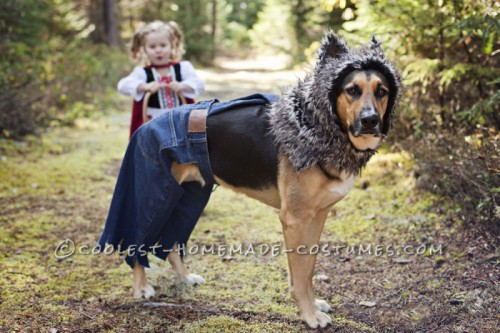 bad wolf dog costume (via ideas)