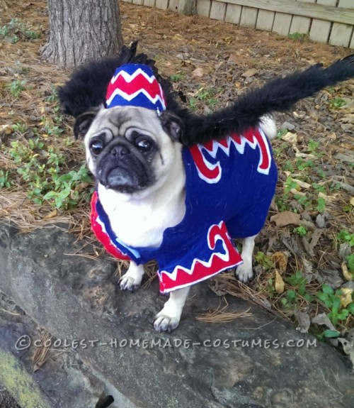 flying monkey dog costume (via ideas)