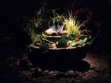 Garden Light Ideas