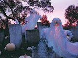 a graveyard with cheesecloth ghosts and gravestones is a nice front or backyard idea for Halloween