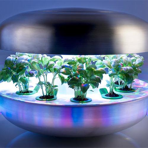 Glowing Growing Unit