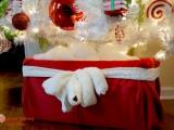 Santa tree stand