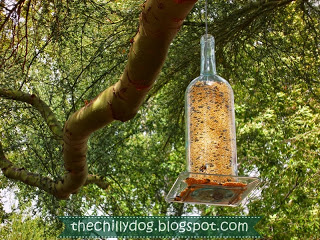 wine bottle bird feeder (via thechillydog)