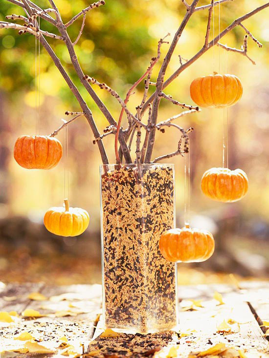 non painted branches placed into a vase with seeds and with mini pumpkins as ornaments is very natural and cool