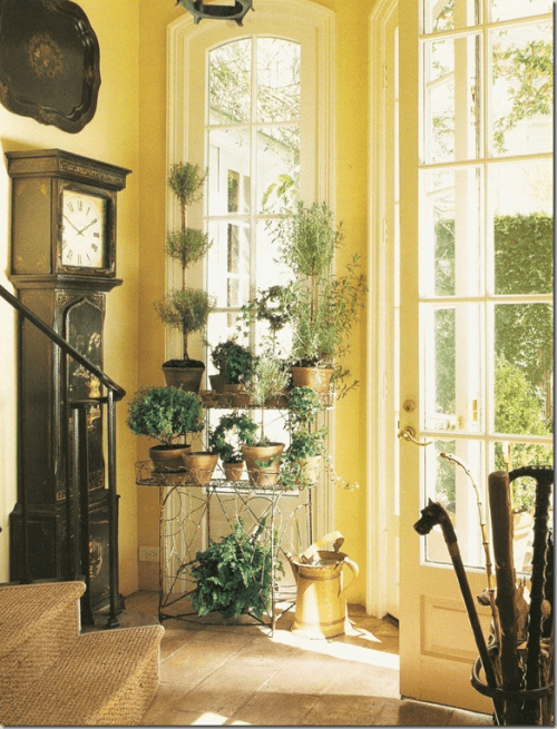 If there isn't enough space elsewhere you can create a DIY herb garden in a hallway