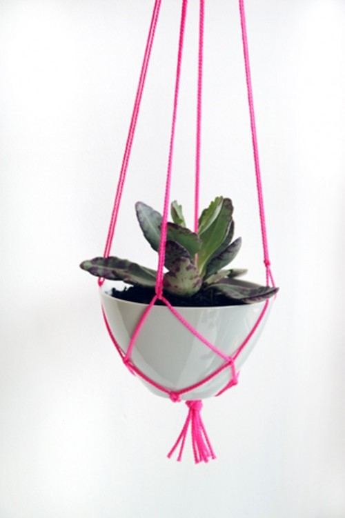 Hanging Planter As A Simple Spring Gift Under